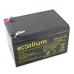 Batteria Exalium al Piombo - 12 V 12 Ah T1